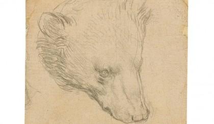 Leonardo Da Vinci's 'Head of Bear' drawing seen fetching up to $16m