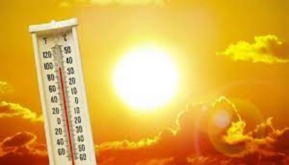 Heat wave may continue for 4/5 more days: BMD