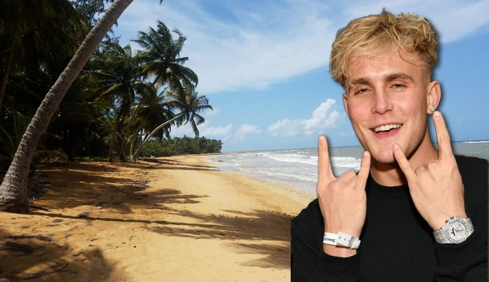 Jake Paul investigated over suspected driving on protected turtle beach