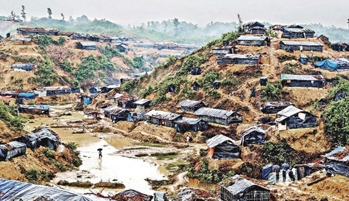 Restoring Forest Ecosystem in Cox's Bazar