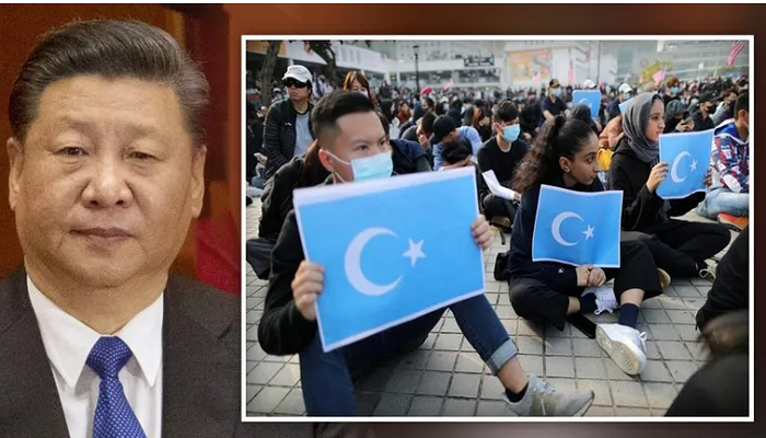 China's uyghur repression not just cultural but 'physical', says report as birthrates drop