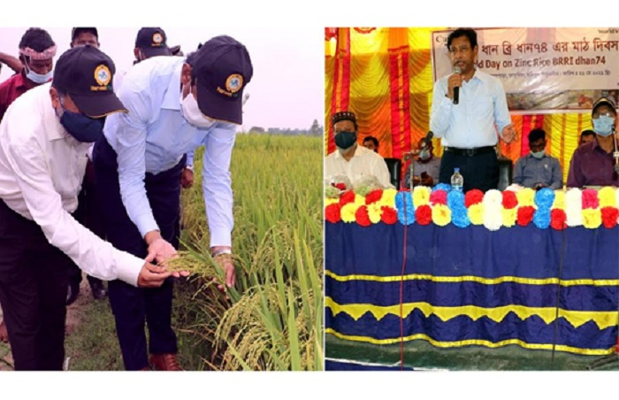 Consumption of zinc rice frees from malnutrition: BRRI DG