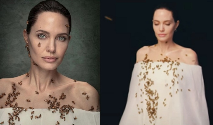 Angelina Jolie poses covered in bees for National Geographic