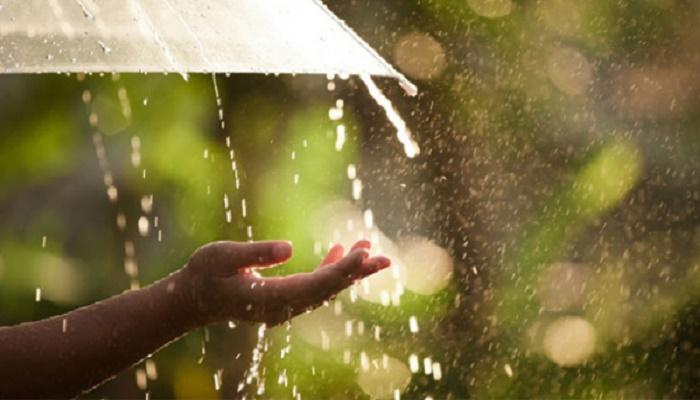 Rain or thundershowers likely
