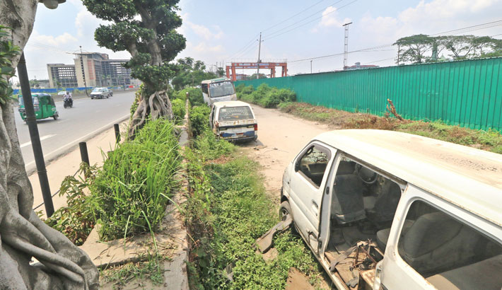 Bansai trees which are very expensive were planted on the central reservation