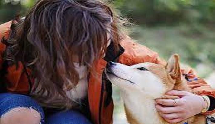 Latest coronavirus comes from dogs: Study