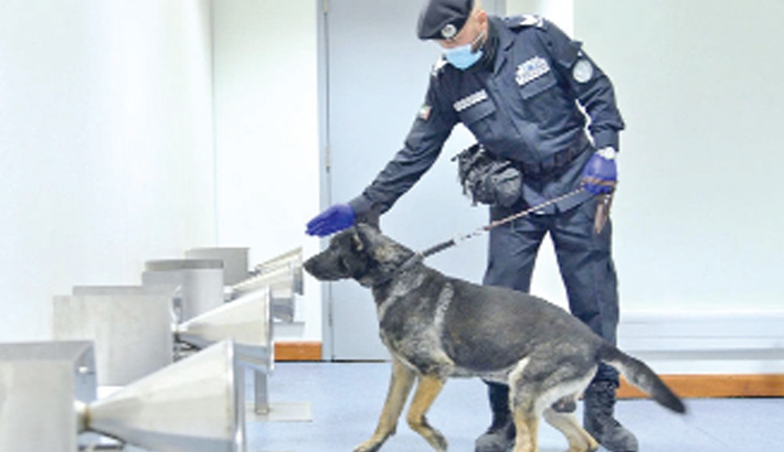 Dogs can detect Covid-positive arrivals