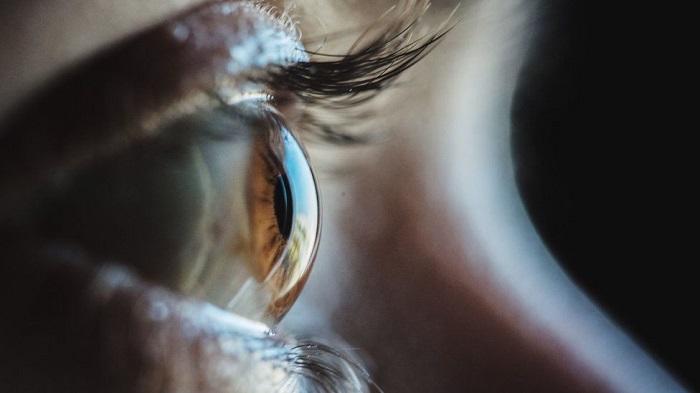 Algae proteins partially restore man's sight