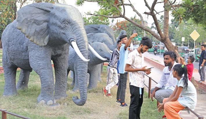 Visitors take selfie beside elephant sculptures