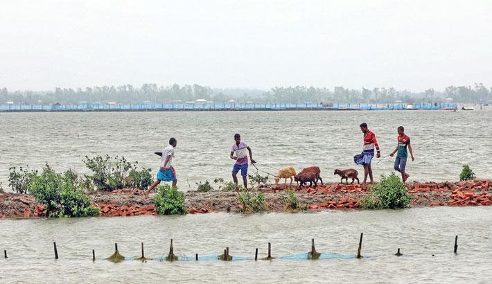 Coastal belt inundated by tidal surge
