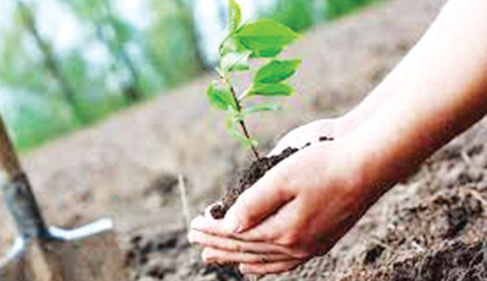 All must contribute to save environment
