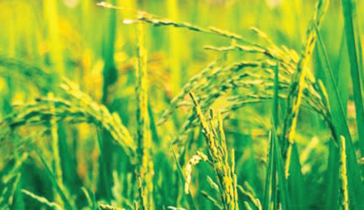 PRAN Agro issues internationally guaranteed bond in Bangladesh