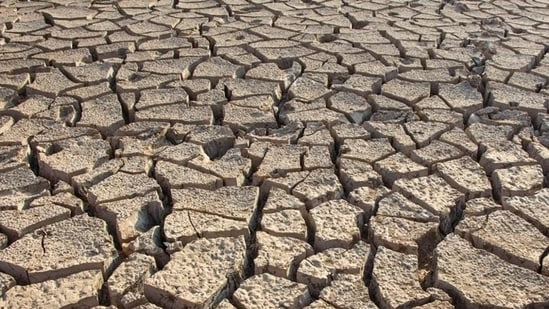 Pakistan: Sindh province facing 'worst' water shortage in 60 years, says official