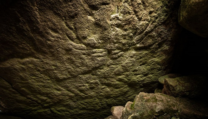 Extremely rare prehistoric animal carvings found for first time in Scotland