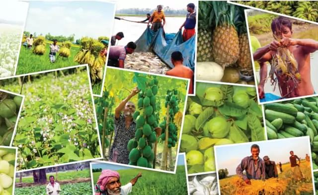 10-yr tax exemption proposed for local agro-based industries