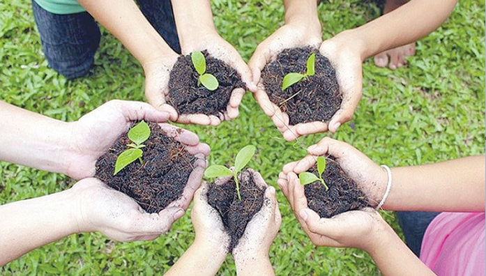 PM to launch 'National Tree Plantation Campaign' Saturday