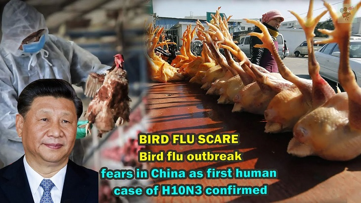 Bird flu outbreak fears in China as first human case of H10N3 confirmed
