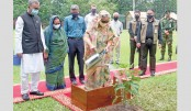 Plant more trees, save environment: PM