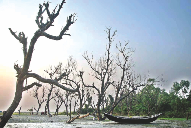 Climate change to get priority in Bangladesh alongside Covid support: ADB