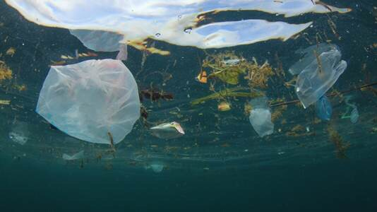 ESCAP and partners launch science-based e-learning course to tackle marine plastic litter in cities
