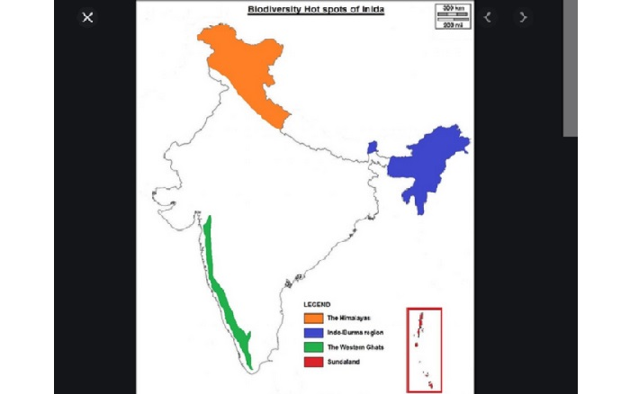India has lost 90pc of the area under its biodiversity hotspots: CSE