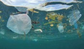 ESCAP launches science-based e-learning course to tackle marine plastic pollution
