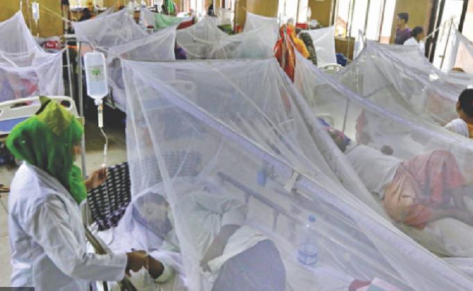 18 dengue patients undergoing treatment at Dhaka hospitals: DGHS
