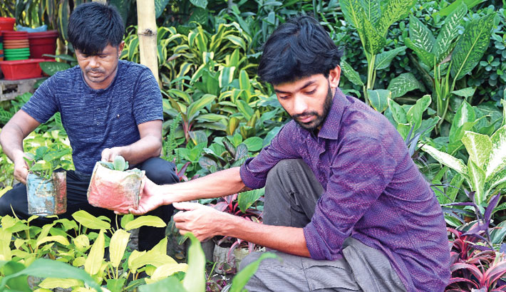 Online nursery changes Subril's life