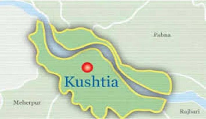 Covid positivity rate in Kushtia is 29.75 percent