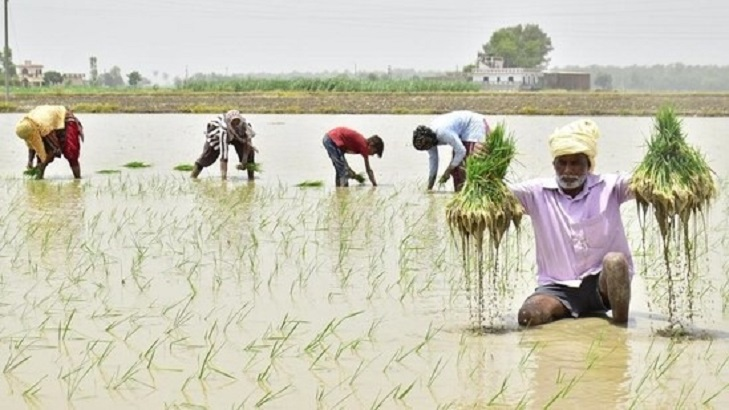 India's aspirational districts programme resulted in sectoral growth: UNDP report