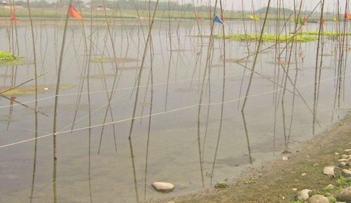 50 more fish sanctuaries being set up in Rajshahi
