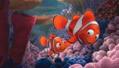 Dark Finding Nemo theory is 'ruining whole childhoods' for Pixar fans