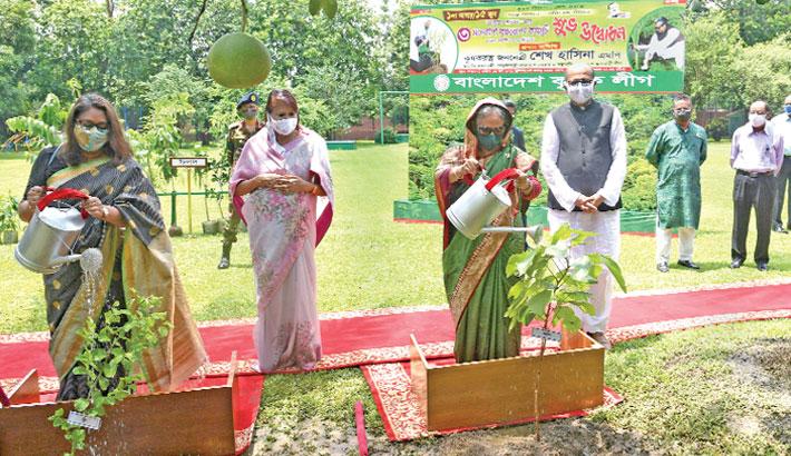 Govt working for more afforestation: PM
