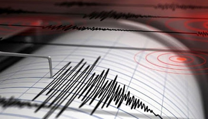 Quake shakes part of east Indonesia, people warned off beach