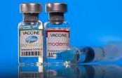 Pfizer, Moderna COVID-19 vaccines do not lower sperm count: Study