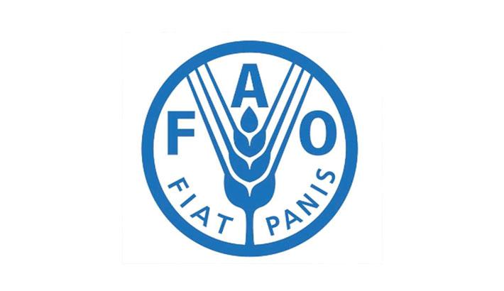 Bangladesh elected member of FAO Council