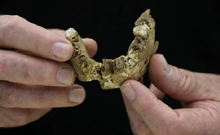'New type of early human' found in Israel