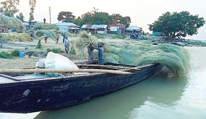 Farmers taking sungrasses to a village market to sell after collecting them from the char of the Jamuna river. The photo was taken from Awlakandi Ghat in Dhunat upazila of Bogura district on Saturday. — PBA photo
