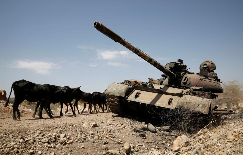 Ethiopia declares Tigray ceasefire as rebels enter regional capital