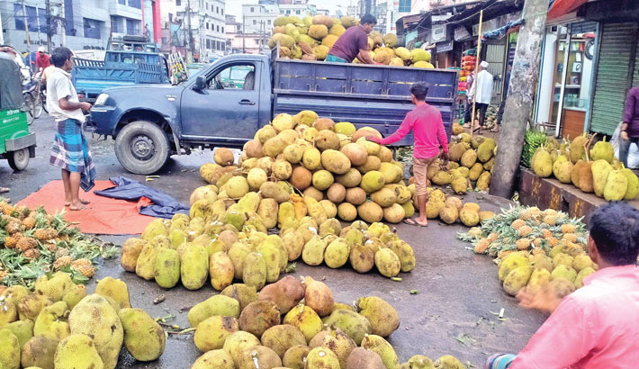 A truck is being loaded with jackfruits at Reazuddin Bazar in Chattogram. Jackfruits are transported to different parts of the country, including the capital, from here everyday. The photo was taken on Monday.—Star Mail