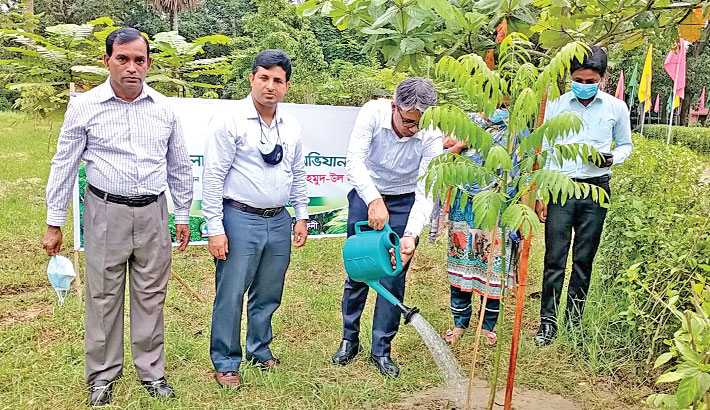 Deputy Commissioner of Feni Abu Salim Mahmud-Ul Hasan waters to a sapling after inaugurating a tree plantation programme at Kazirbagh Ecopark in the district town on Tuesday.— Sun Photo