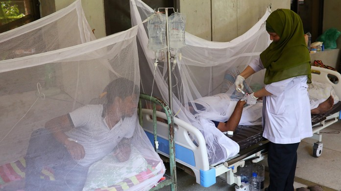 32 more dengue patients hospitalised in capital