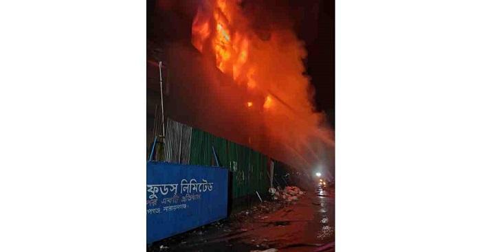 3 killed in N'ganj factory fire