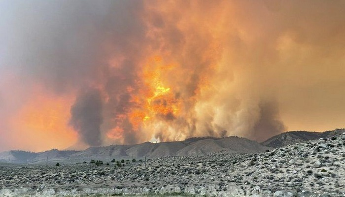 US heatwave: Wildfires rage in western states as temperatures soar