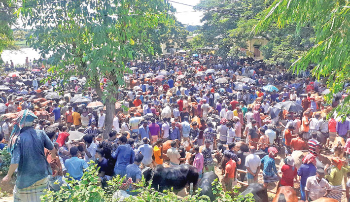 People crowd a cattle market at Shibpur market in Raipura Upazila of Narsingdi District on Sunday without maintaining social distancing, putting themselves and others at risk of coronavirus infection.— PBA Photo