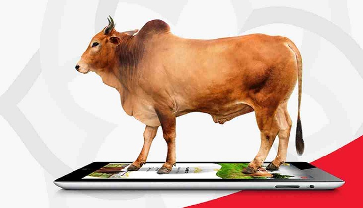 Offers galore in online cattle markets