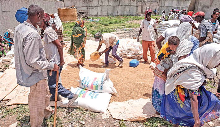 People gather as a man collects grains of wheat during a food distribution organized by the Amhara government near the village of Baker, 50 km southeast of Humera, in the Tigray Region of Ethiopia recently.