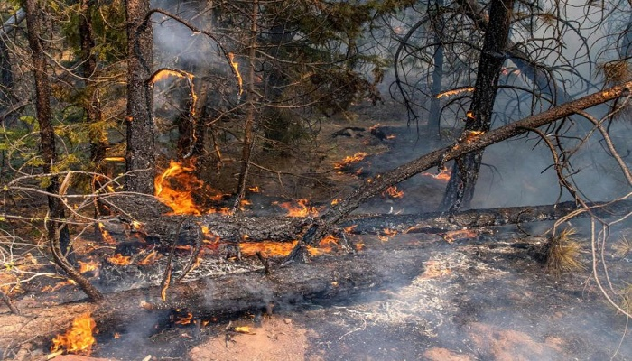 Major US wildfire grows, forcing new evacuations