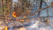 US, Canada wildfires continue to scorch vast areas
