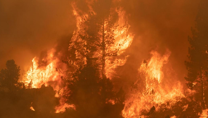 Wildfires are getting so big they're sending smoke from Russia to US